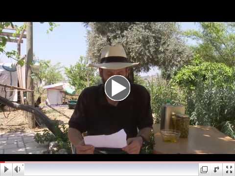 The Weisman Family Explain Shmita from their Farm in Israel