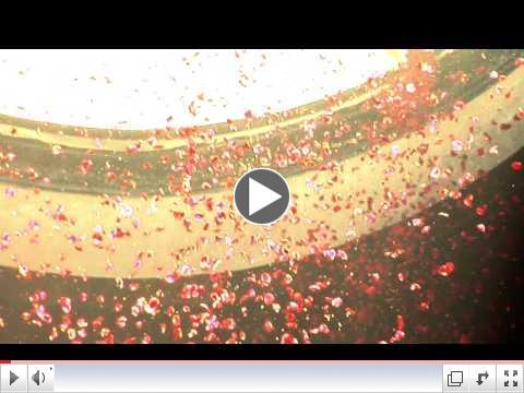 Pluie de p�tales de roses au Panth�on � Rome