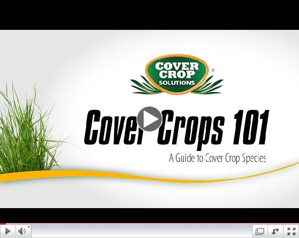 Cover Crops 101 - A Guide to Cover Crop Species