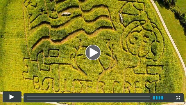 Corn Maze at the Great Country Farms