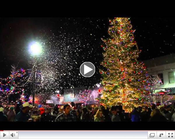 Fallon Tree Lighting