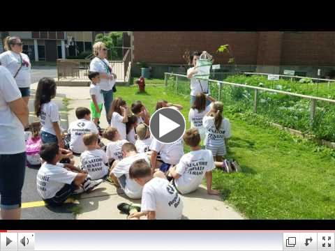 Life Cycle of Butterfly / Il Ciclo Vitale delle Farfalle - Summer Camp, Day 11 - July 10, 2017