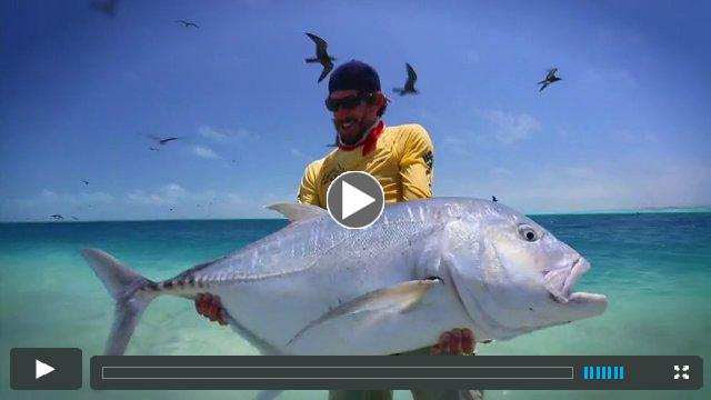 320 Trailer - Fly Fishing with Capt. Jako Lucas