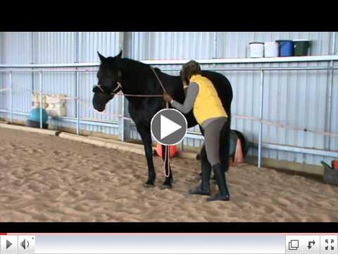 Heart Girth Video