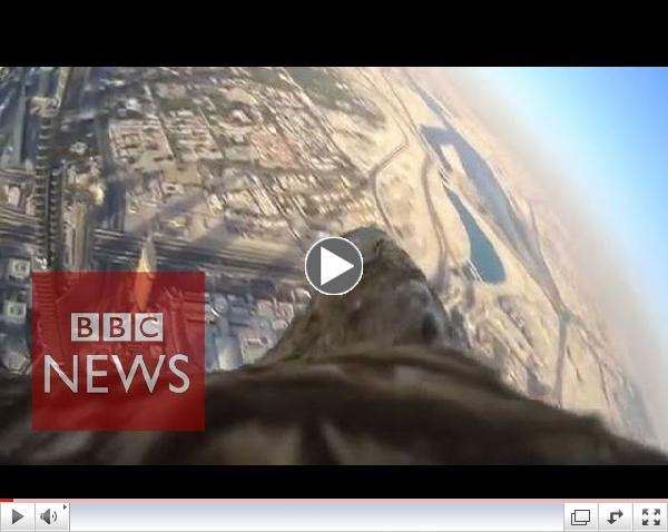 Eagle-cam reveals incredible POV as it descends from Burj Khalifa - BBC News