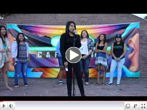 Videos from July 2015 Art in the Park