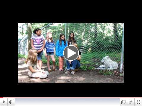WOLFWATCHER AND THE WOLF CONSERVATION CENTER URGE YOU TO SEE TRUE WOLF
