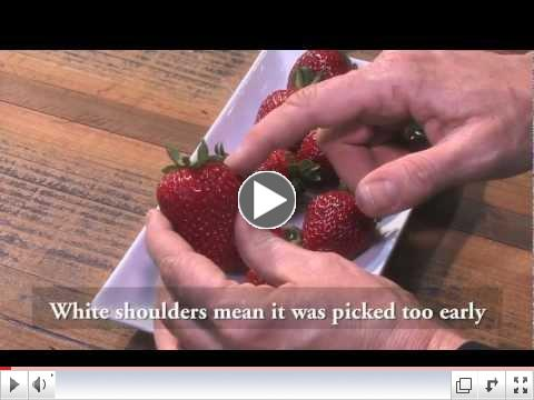 Veggie Box Shares 5 Tips for Picking the Best Strawberries