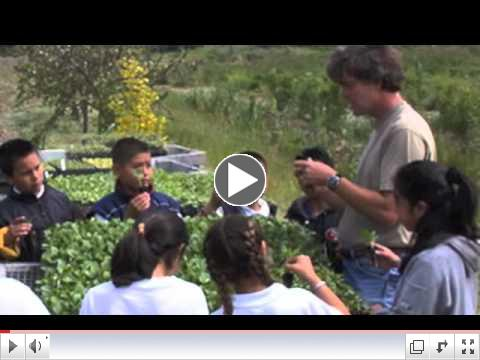 ground swell : the live earth farm discovery program
