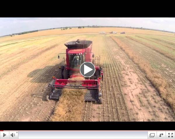 Harvesting Canola in Noble County Oklahoma, June 2014