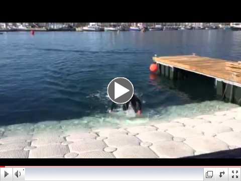 Cape Town Practice Swim Exit