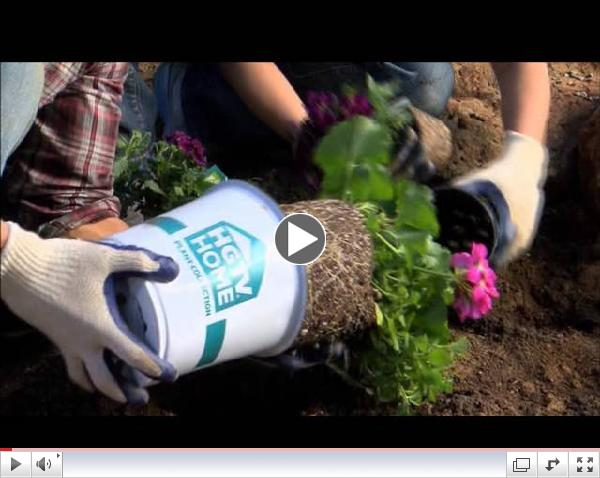 Yard Crashers featuring HGTV HOME Plant Collection