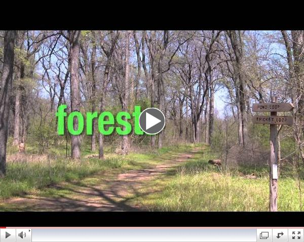 John F. Burke Nature Preserve: An Overview