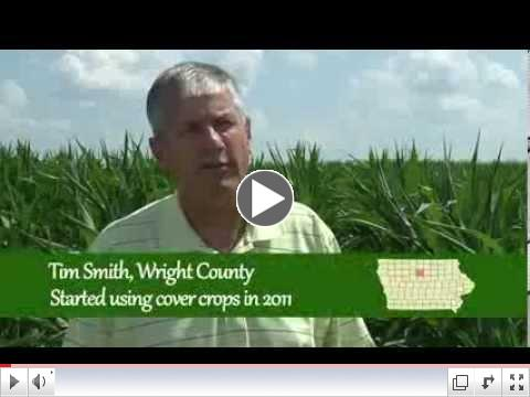 Cover Crops: Farmer Perspectives - Why grow cover crops?