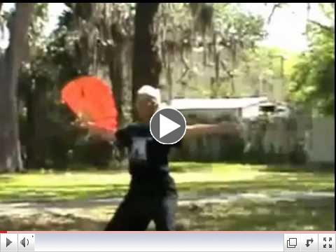 Sarasota World Tai Chi and Qigong Day - 2013