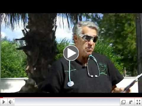 Natural Treatment for High Blood Pressure  2010