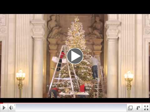 1 Minute Video of the RWF World Tree of Hope being decorated.