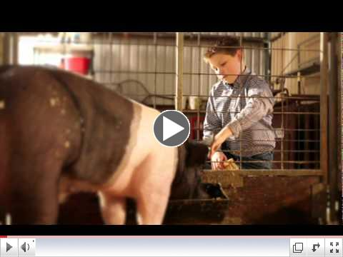 Purina� 60 Day See the Difference Challenge