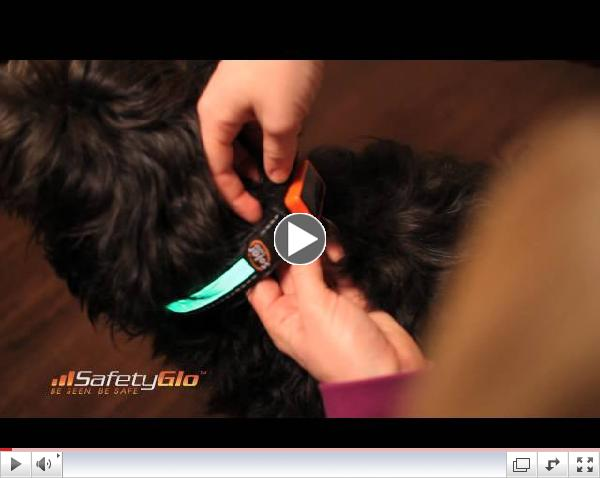 SafetyGlo Demonstration Video