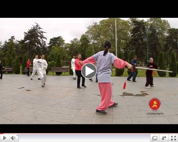 World Tai Chi Day 2014 in Macedonia - 32 Taijijian