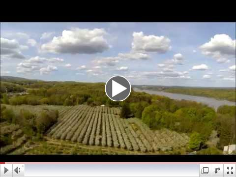 Locust Grove Fruit Farm Blossom along the banks of the Hudson River!