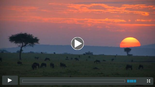 KENYA - CONSERVANCY TOURISM