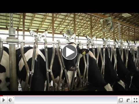 The Udder Truth- Episode One