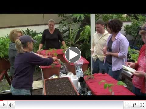 Two Dog Organic Nursery Mini-Doc for EarthBox