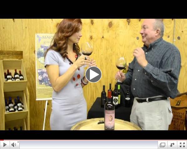 Wine Spotlight: Terra Jovia Primitivo Riserva