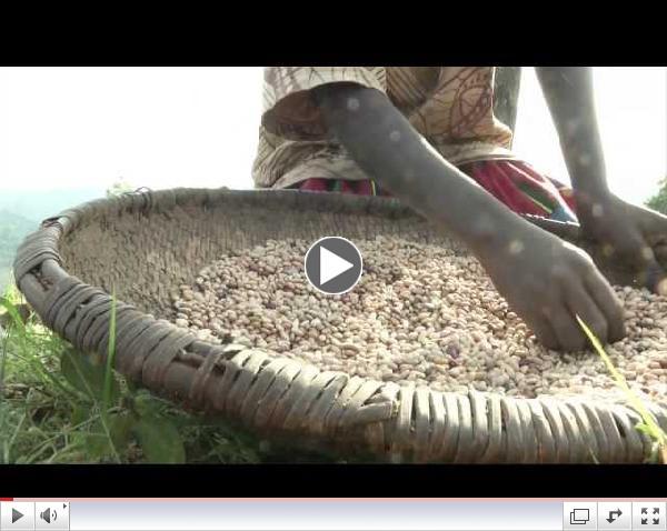 Burundi: A strike against chronic malnutrition