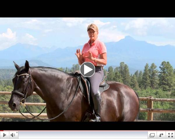 Parelli Four Savvys - FreeStyle Riding Lateral Flexion with Linda Parelli