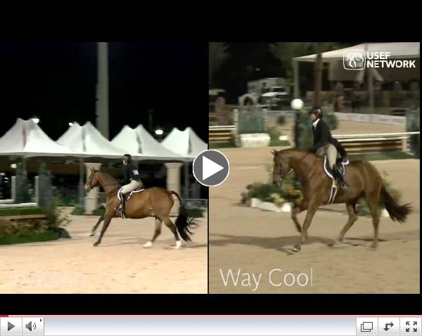 Side by Side: Tori Colvin's Top 2 at the 2014 #HunterSpectacular