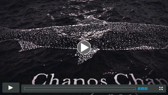 Chanos Chanos