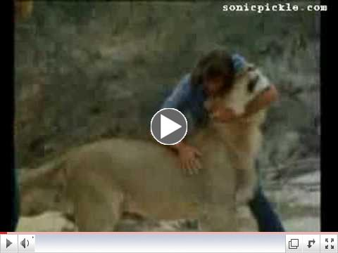 Christian The Lion - An uplifting story about friendship