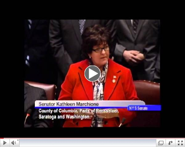 Kathleen Marchione comments on Gun Control Legislation in Senate Session - January 14, 2013