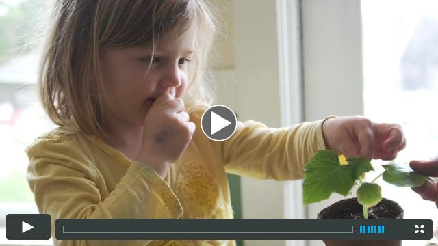 Farm to Early Care Education in Addison County