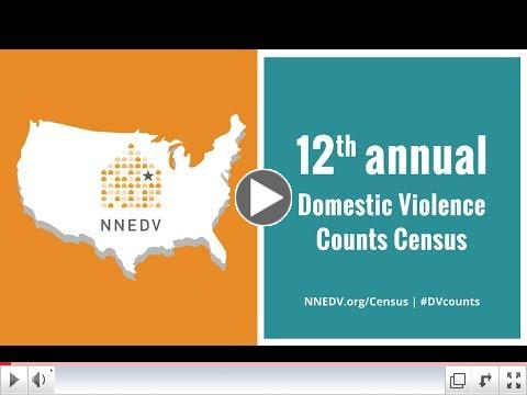 12th Annual Domestic Violence Counts Census