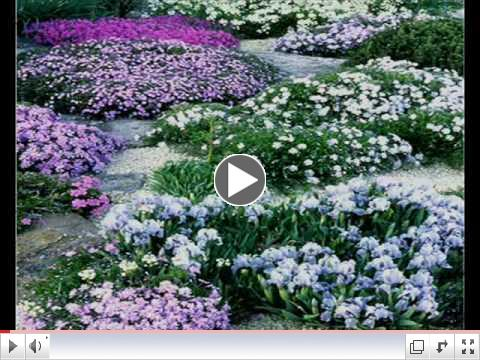 Mendelssohn - Spring Song - Songs Without Words