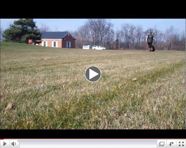 Chewbacca Tracking Training