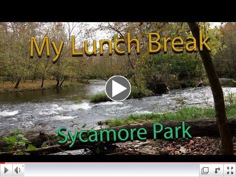 Join David S. as he takes a fun & fast look at Sycamore Park