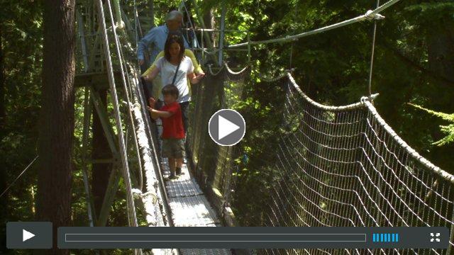 Greenheart Canopy Walkway