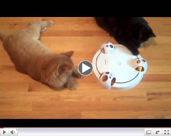Smarthome - Frolicat PC1 POUNCE Rotating Cat Teaser