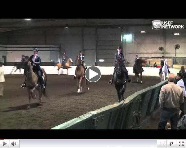 3-Gaited Railwork at the U.S. Saddle Seat Invitational