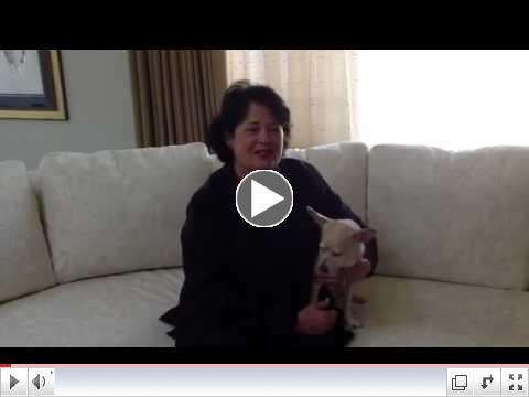 Linda Reinstein, ADAO President's Message