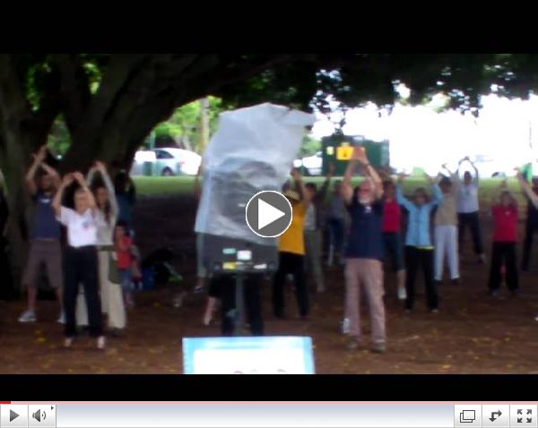 World Tai Chi & Qigong Day 2010 - Brisbane Australia.MP4
