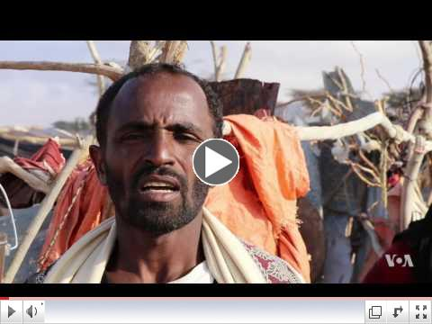 Pastoralists in Somalia's Drought-stricken Puntland Fight for Survival/ VOA