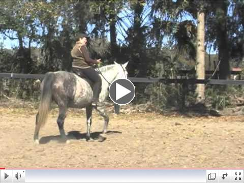 Pilates for Dressage Lesson: Open Your Hips for Better Seat Position