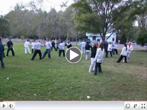 D??a Internacional del Tai Chi Chuan - Argentina - 2010