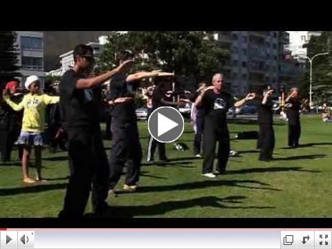 CAPE TOWN, SOUTH AFRICA, WORLD TAI CHI & QI GONG DAY 2010