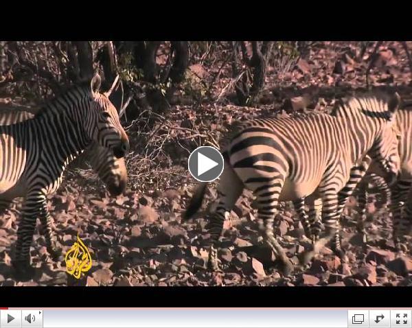 Namibia drought sparks global warming debate - JazeeraEnglish